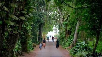 Aburi botanischer Garten Ghana